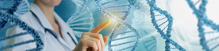 게놈안정성연구소